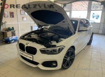 Защитная сетка в BMW